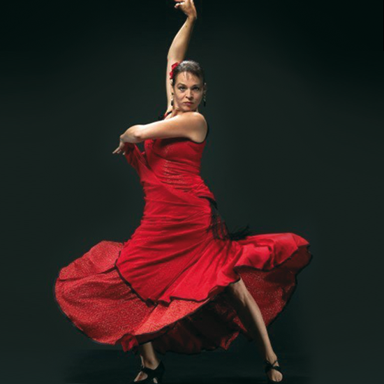 Flamenco: Fuego Andaluz